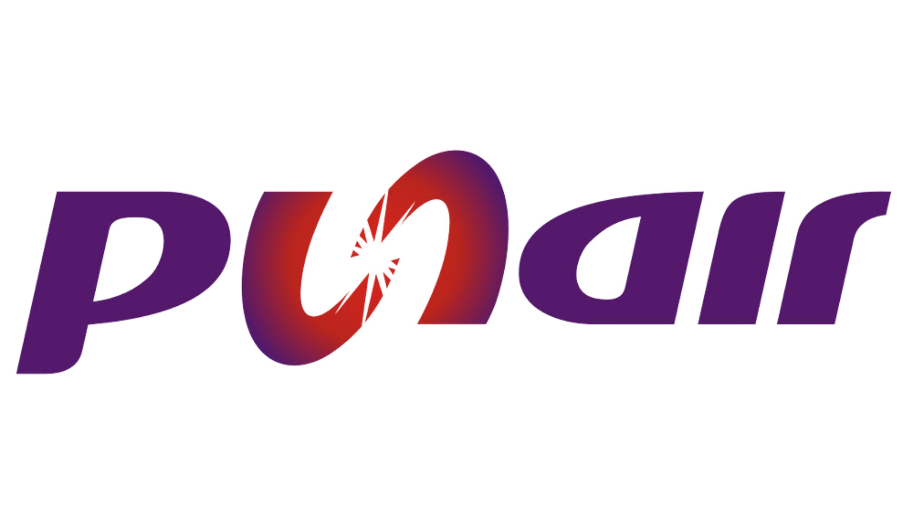 Punair Logo